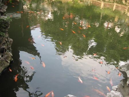 上海旅行(1) 038.jpg